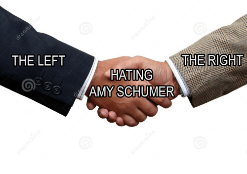 Amy Schumer: THE LEFT  THE RIGHT  HATING  AMY SCHUMER