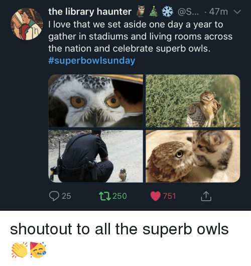 the nation: the library haunter  I love that we set aside one day a year to  gather in stadiums and living rooms across  the nation and celebrate superb owls.  #superbow!sunday  @S... 47m  25 250 751 1, shoutout to all the superb owls👏🥳