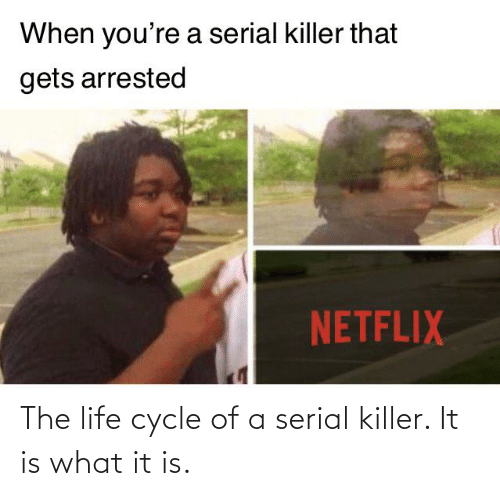 serial killer: The life cycle of a serial killer. It is what it is.
