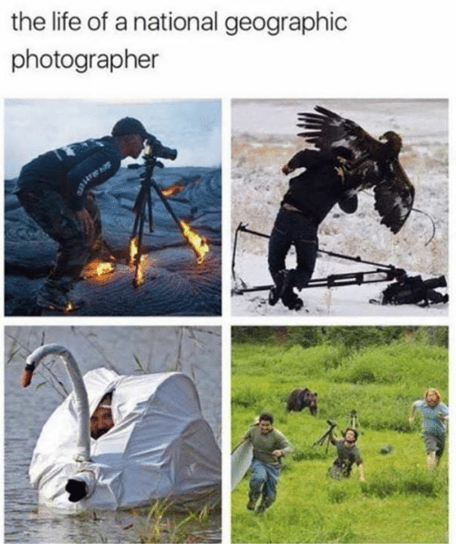 Geographic: the life of a national geographic  photographer