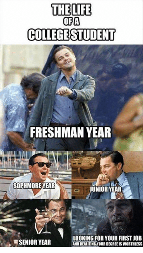 Sophmoric: THE LIFE  OFA  COLLEGESTUDENT  FRESHMAN YEAR  SOPHMORE YEAR  JUNIOR YEAR  LOOKING FOR YOUR FIRST JOB  SENIOR YEAR  ANDIREALIZING YOUR DEGREEISWORTHLESS