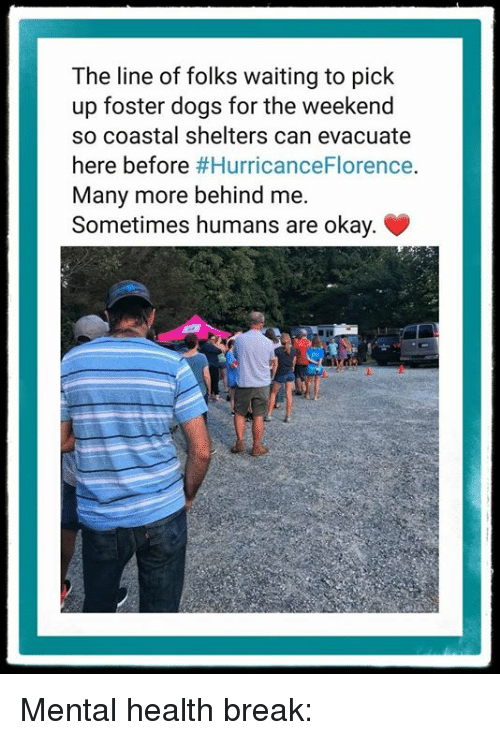 Shelters: The line of folks waiting to pick  up foster dogs for the weekend  so coastal shelters can evacuate  here before #HurricanceFlorence.  Many more behind me.  Sometimes humans are okay. Mental health break:
