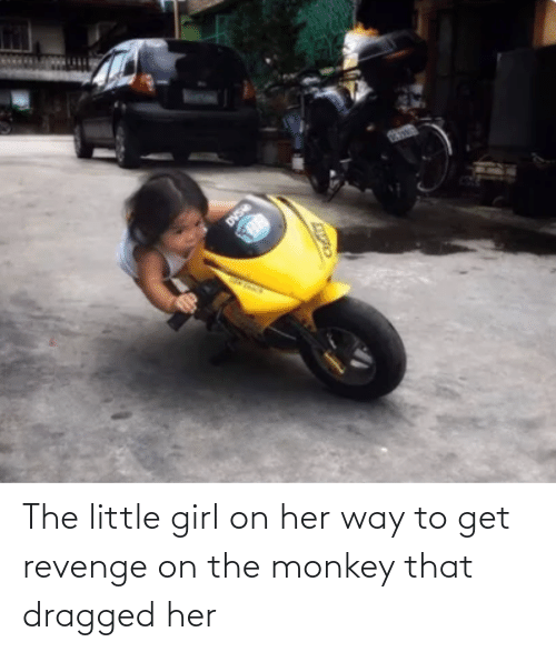 Dragged: The little girl on her way to get revenge on the monkey that dragged her