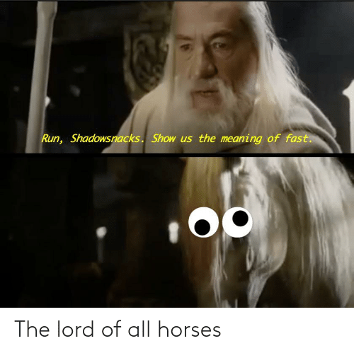The Lord: The lord of all horses