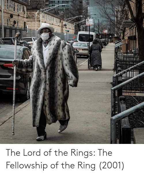 The Lord: The Lord of the Rings: The Fellowship of the Ring (2001)