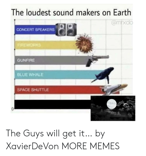blue whale: The loudest sound makers on Earth  @mrxdo  CONCERT SPEAKERS  FIREWORKS  GUNFIRE  BLUE WHALE  SPACE SHUTTLE The Guys will get it… by XavierDeVon MORE MEMES