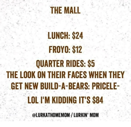 Lol, Bears, and Mom: THE MALL  LUNCH: $24  FROYO: $12  QUARTER RIDES:$5  THE LOOK ON THEIR FACES WHEN THEY  GET NEW BUILD-A-BEARS: PRICELE-  LOL I'M KIDDING IT'S $84  @LURKATHOMEMOM/ LURKIN' MOM
