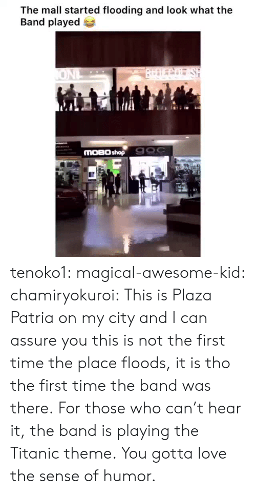 assure: The mall started flooding and look what the  Band played  BrDLCo SH  ONL  MOBO shop 900 tenoko1: magical-awesome-kid:  chamiryokuroi: This is Plaza Patria on my city and I can assure you this is not the first time the place floods, it is tho the first time the band was there.  For those who can't hear it, the band is playing the Titanic theme.  You gotta love the sense of humor.