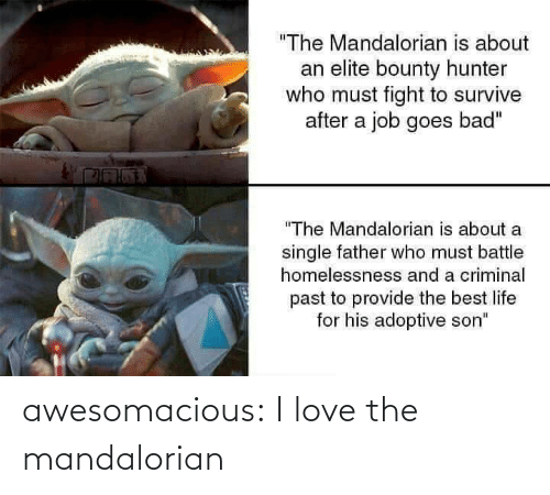 "Elite: ""The Mandalorian is about  an elite bounty hunter  who must fight to survive  after a job goes bad""  ""The Mandalorian is about a  single father who must battle  homelessnesss and a criminal  past to provide the best life  for his adoptive son"" awesomacious:  I love the mandalorian"