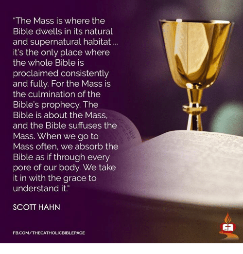 """proclaim: """"The Mass is where the  Bible dwells in its natural  and supernatural habitat  it's the only place where  the whole Bible is  proclaimed consistently  and fully. For the Mass is  the culmination of the  Bible's prophecy. The  Bible is about the Mass,  and the Bible suffuses the  Mass. When we go to  Mass often, we absorb the  Bible as if through every  pore of our body. We take  it in with the grace to  understand it  SCOTT HAHN  FB.COM/THECATHOLICBIBLEPAGE"""