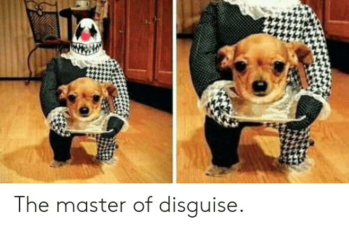 the master: The master of disguise.