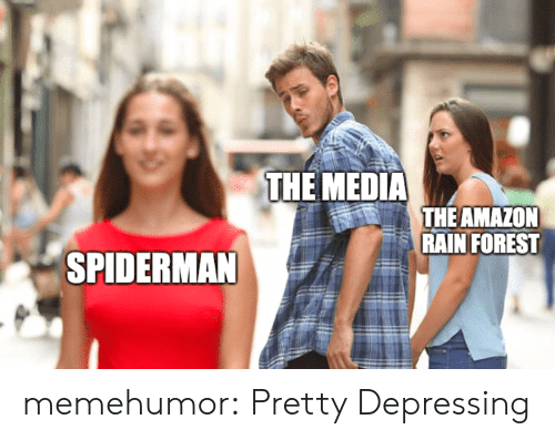 Amazon, Tumblr, and Blog: THE MEDIA  THE AMAZON  RAIN FOREST  SPIDERMAN memehumor:  Pretty Depressing