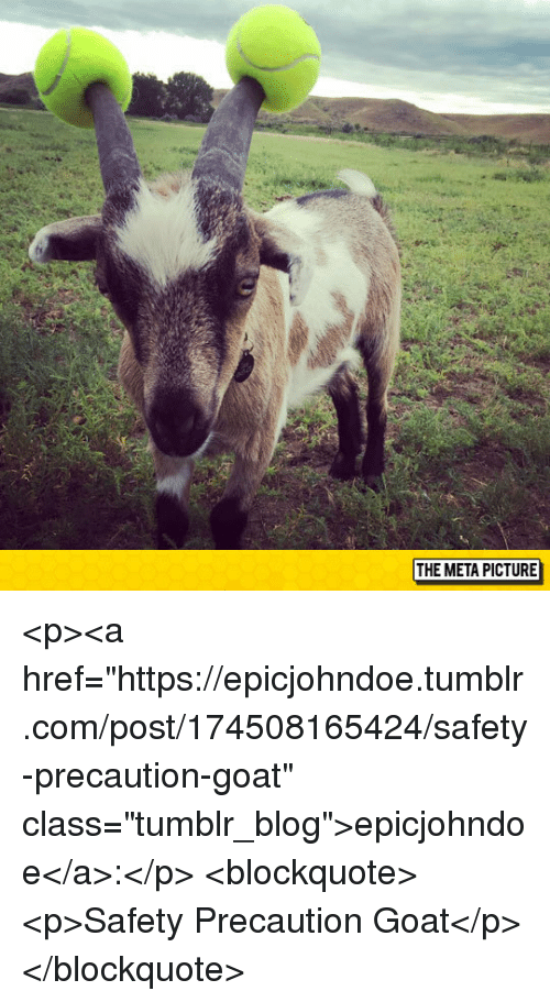 """Tumblr, Goat, and Blog: THE META PICTURE <p><a href=""""https://epicjohndoe.tumblr.com/post/174508165424/safety-precaution-goat"""" class=""""tumblr_blog"""">epicjohndoe</a>:</p>  <blockquote><p>Safety Precaution Goat</p></blockquote>"""