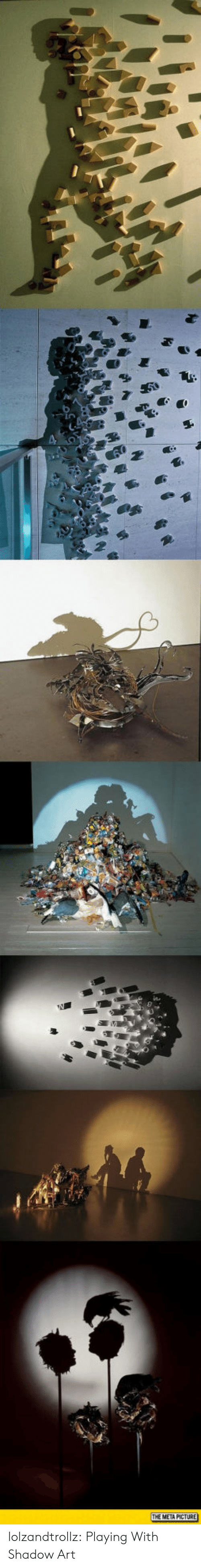 Tumblr, Blog, and Http: THE META PICTURE lolzandtrollz:  Playing With Shadow Art