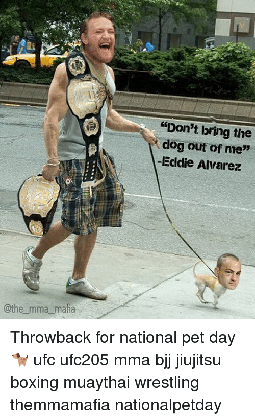 "clogs: @the mma mafia  ""Don't bring the  clog out of me""  -Eddie Alvarez Throwback for national pet day 🐕 ufc ufc205 mma bjj jiujitsu boxing muaythai wrestling themmamafia nationalpetday"