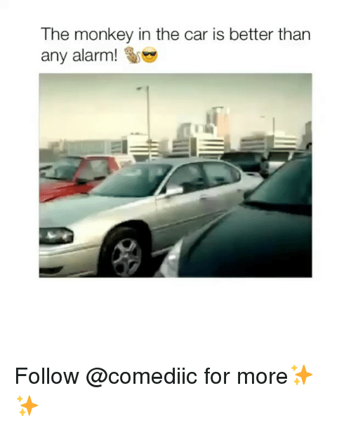 Memes, Alarm, and Monkey: The monkey in the car is better than  any alarm! Follow @comediic for more✨✨