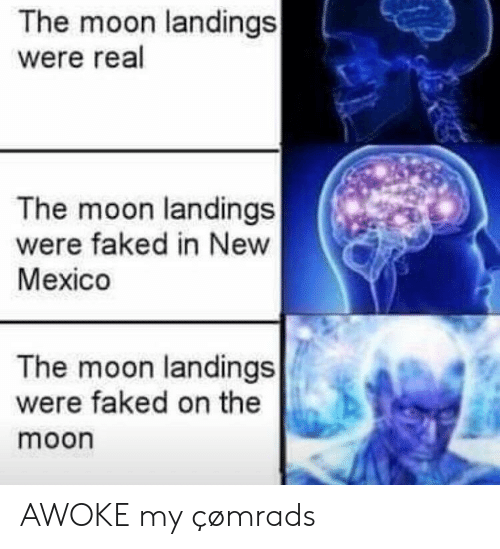 New Mexico: The moon landings  were real  The moon landings  were faked in New  Mexico  The moon landings  were faked on the  moon AWOKE my çømrads