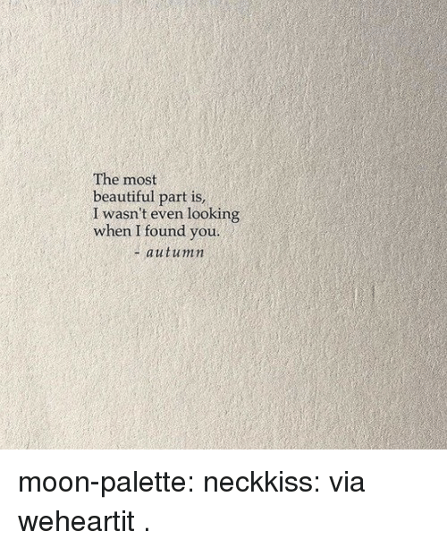 palette: The most  beautiful part is  I wasn't even looking  when I found you.  + autumin moon-palette: neckkiss: via weheartit  .
