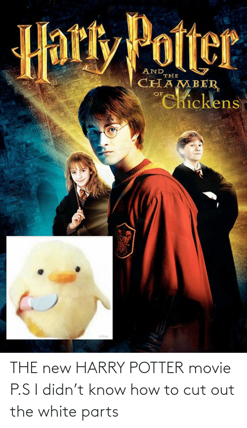 Harry Potter: THE new HARRY POTTER movie P.S I didn't know how to cut out the white parts