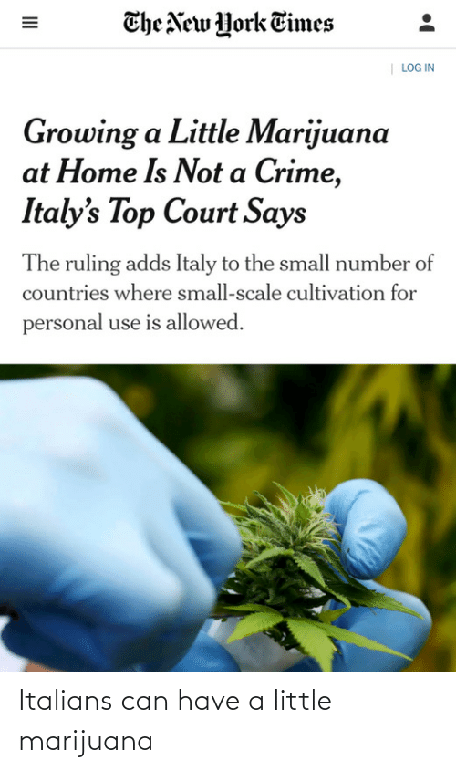 personal: The New York Times  | LOG IN  Growing a Little Marijuana  at Home Is Not a Crime,  Italy's Top Court Says  The ruling adds Italy to the small number of  countries where small-scale cultivation for  personal use is allowed.  II Italians can have a little marijuana