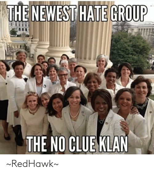 The Newest: THE NEWEST HATE GROUP  THE NO CLUE KLAN ~RedHawk~