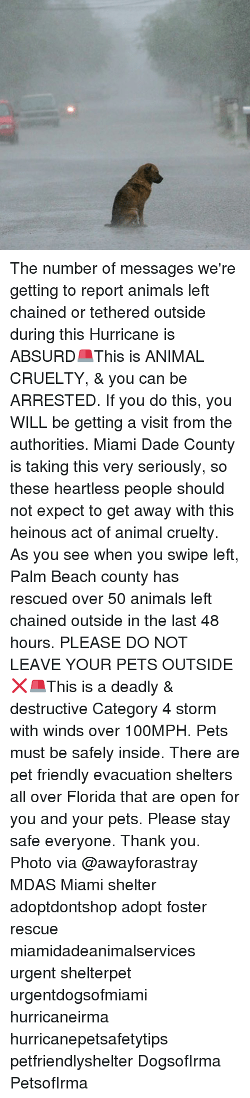 beached: The number of messages we're getting to report animals left chained or tethered outside during this Hurricane is ABSURD🚨This is ANIMAL CRUELTY, & you can be ARRESTED. If you do this, you WILL be getting a visit from the authorities. Miami Dade County is taking this very seriously, so these heartless people should not expect to get away with this heinous act of animal cruelty. As you see when you swipe left, Palm Beach county has rescued over 50 animals left chained outside in the last 48 hours. PLEASE DO NOT LEAVE YOUR PETS OUTSIDE❌🚨This is a deadly & destructive Category 4 storm with winds over 100MPH. Pets must be safely inside. There are pet friendly evacuation shelters all over Florida that are open for you and your pets. Please stay safe everyone. Thank you. Photo via @awayforastray MDAS Miami shelter adoptdontshop adopt foster rescue miamidadeanimalservices urgent shelterpet urgentdogsofmiami hurricaneirma hurricanepetsafetytips petfriendlyshelter DogsofIrma PetsofIrma