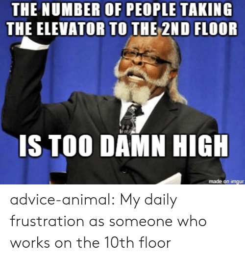Advice, Tumblr, and Animal: THE NUMBER OF PEOPLE TAKING  THE ELEVATOR TO THE 2ND FLOOR  IS TOO DAMN HIG  made on imgur advice-animal:  My daily frustration as someone who works on the 10th floor