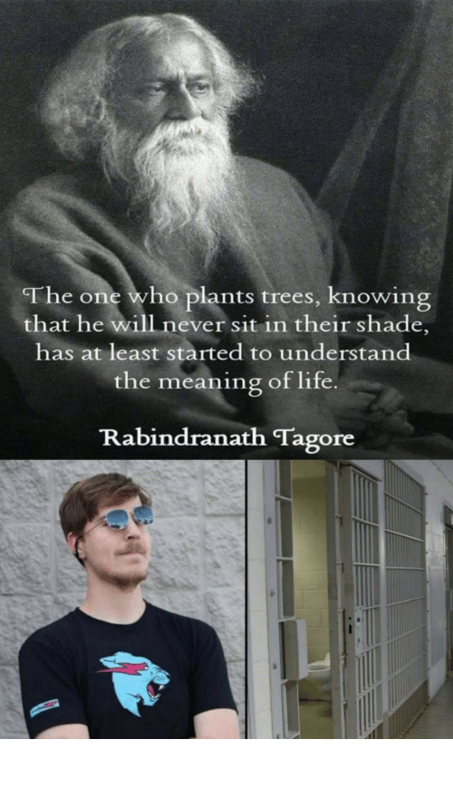 He Will: The one who plants trees, knowing  that he will never sit in their shade,  has at least started to understand  the meaning of life  Rabindranath Tagore Mrbeast