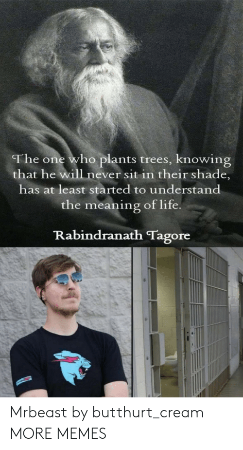 He Will: The one who plants trees, knowing  that he will never sit in their shade,  has at least started to understand  the meaning of life  Rabindranath Tagore Mrbeast by butthurt_cream MORE MEMES