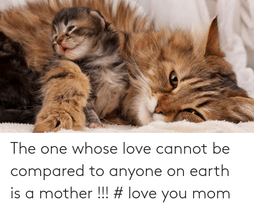 Love You Mom: The one whose love cannot be compared to anyone on earth is a mother !!! # love you mom