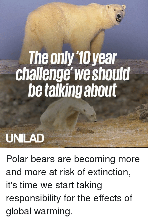 At Risk: The only 10year  Challenge we should  be talking about  UNILAD Polar bears are becoming more and more at risk of extinction, it's time we start taking responsibility for the effects of global warming.