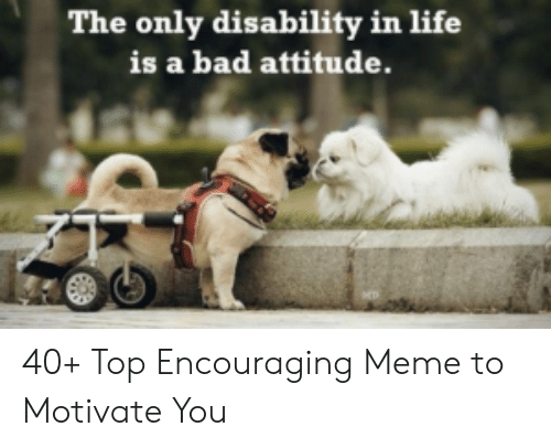 Encouraging Meme: The only disability in life  is a bad attitude. 40+ Top Encouraging Meme to Motivate You