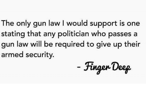 Memes, 🤖, and Gun: The only gun law I would support is one  stating that any politician who passes a  gun law will be required to give up their  armed security.  Fingen Doep