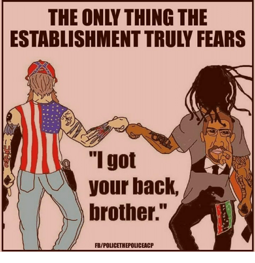 """Memes, Back, and 🤖: THE ONLY THING THE  ESTABLISHMENT TRULY FEARS  """"I got  your back,  brother.""""  FB/POLICETHEPOLICEACP"""