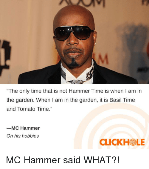 "Clickhole: ""The only time that is not Hammer Time is when I am in  the garden. When I am in the garden, it is Basil Time  and Tomato Time.""  ーMC Hammer  On his hobbies  CLICKHOLE MC Hammer said WHAT?!"