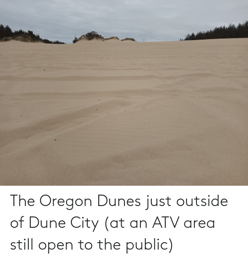 Outside Of: The Oregon Dunes just outside of Dune City (at an ATV area still open to the public)