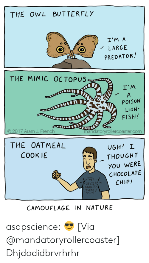 In Nature: THE OWL BUTTERFLY  I'M A  LARGE  PREDATOR  THE MIMIC OCTOPUS  I'M  POISON  LION  FISH  © 2017 Aram J. French  mandatoryrollercoaster.com  THE OATMEAL  COOKIE  . THOUGHT  YOU WERE  CHOCOLATE  CHIP!  THE  DEVIL  MAKES  THEEE  CAMOUFLAGE IN NATURE asapscience:  😎 [Via @mandatoryrollercoaster]  Dhjdodidbrvrhrhr