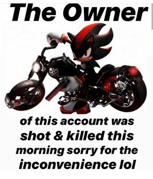 Lol, Sorry, and Inconvenience: The Owner|  of this account was  shot & killed this  morning sorry for the  inconvenience lol