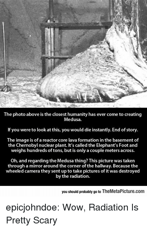 Taken, Tumblr, and Wow: The photo above is the closest humanity has ever come to creating  Medusa  If you were to look at this, you would die instantly. End of story  The image is of a reactor core lava formation in the basement of  the Chernobyl nuclear plant. It's called the Elephant's Foot and  weighs hundreds of tons, but is only a couple meters across  Oh, and regarding the Medusa thing? This picture was taken  through a mirror around the corner of the hallway. Because the  wheeled camera they sent up to take pictures of it was destroyed  by the radiation  you should probably go to TheMetaPicture.com epicjohndoe:  Wow, Radiation Is Pretty Scary