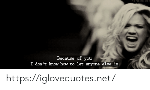 How To, Because of You, and How: THE PIECEISGONE  Because of you  I don't know how to let anyone else in https://iglovequotes.net/