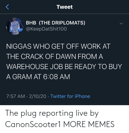 plug: The plug reporting live by CanonScooter1 MORE MEMES