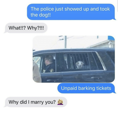 Police: The police just showed up and took  the dog!!  What!!? Why?!!!  Unpaid barking tickets  Why did I marry you?