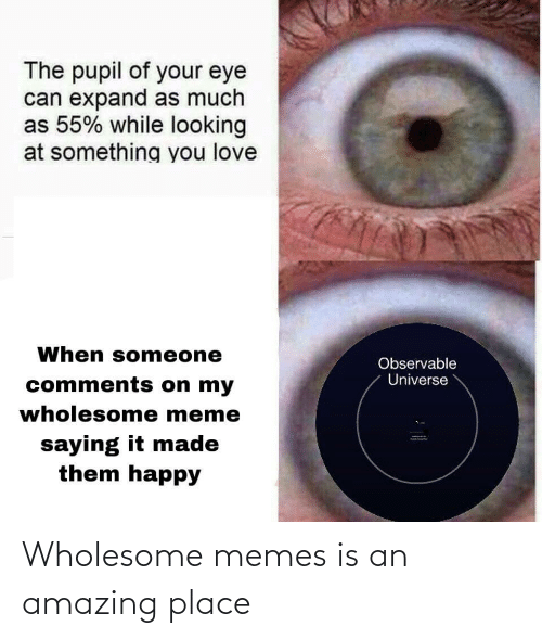 universe: The pupil of your eye  can expand as much  as 55% while looking  at something you love  When someone  Observable  Universe  comments on my  wholesome meme  saying it made  them happy Wholesome memes is an amazing place