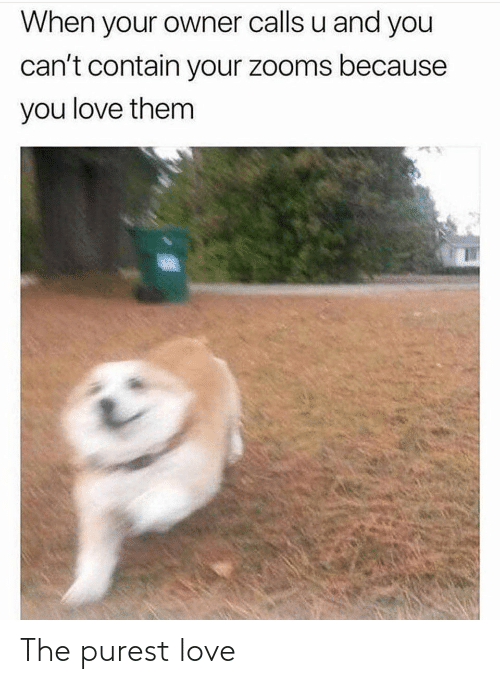 Love: The purest love