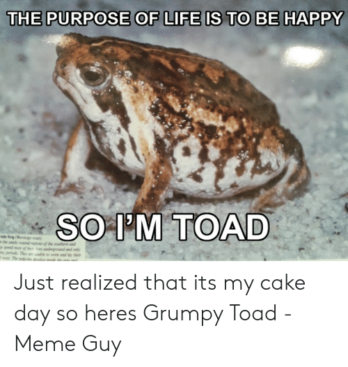 Grumpy Toad: THE PURPOSE OF LIFE IS TO BE HAPPY  SOIM TOAD  rain frog (cps o  she sandy coal repon of the sthen and  pend mo of thesundergrond and only  iny periods They ae unable to im and lay thei  nes The todpon dnele iide the ers and Just realized that its my cake day so heres Grumpy Toad - Meme Guy