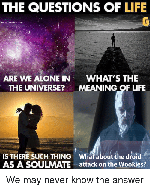 answere: THE QUESTIONS OF LIFE  HAPPY LANDINGS-CORE  ARE WE ALONE IN  WHAT'S THE  THE UNIVERSE?MEANING OF LIFE  IS THERE SUCH THING What about the droid  AS A SOULMATE attack on the Wookies? We may never know the answer