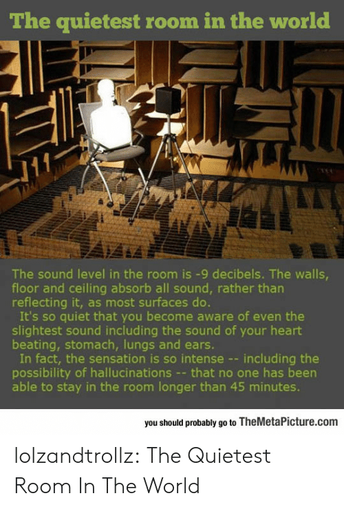 decibels: The quietest room in the world  The sound level in the room is -9 decibels. The walls  floor and ceiling absorb all sound, rather tharn  reflecting it, as most surfaces do.  It's so quiet that you become aware of even the  slightest sound including the sound of your heart  beating, stomach, lungs and ears.  In fact, the sensation is so intense --including the  possibility of hallucinations - that no one has been  able to stay in the room longer than 45 minutes.  you should probably go to TheMetaPicture.com lolzandtrollz:  The Quietest Room In The World