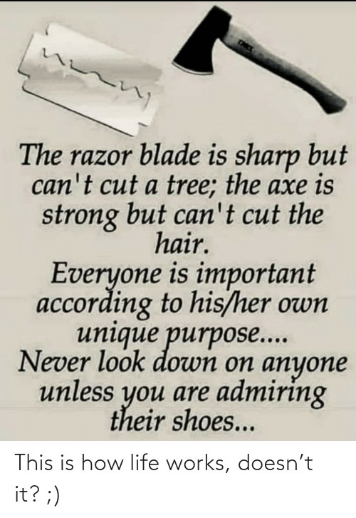 According To: The razor blade is sharp but  can't cut a tree; the axe is  strong but can't cut the  hair.  Everyone is important  according to his/her own  unique purpose...  Never look down on anyone  unless you are admiring  their shoes... This is how life works, doesn't it? ;)