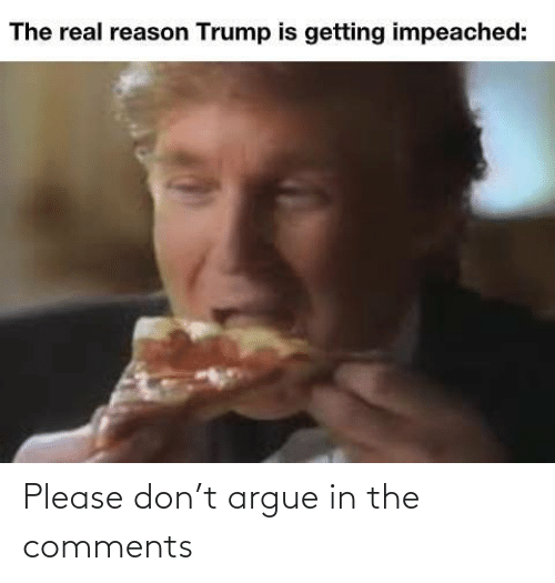 Arguing: The real reason Trump is getting impeached: Please don't argue in the comments