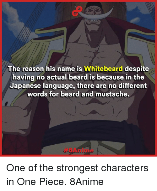 one piec: The reason his name is Whitebeard  despite  having no actual beard is because in the  Japanese language, there are no different  words for beard and mustache. One of the strongest characters in One Piece.   8Anime